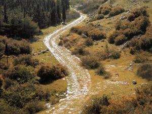 road-to-emmaus
